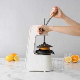 citruspers 23x20x16 H75cm